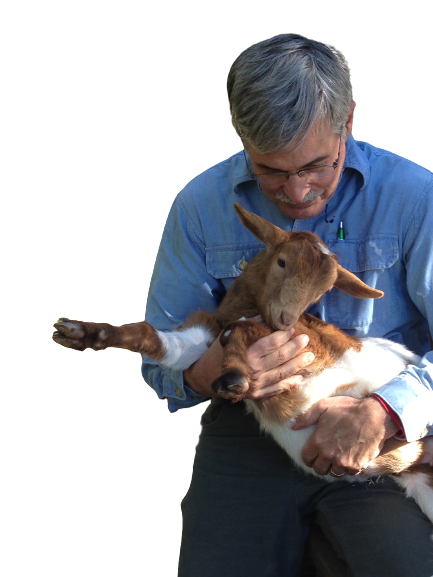 Perry Feyk, aka The GOAT, says hello to his little friend.